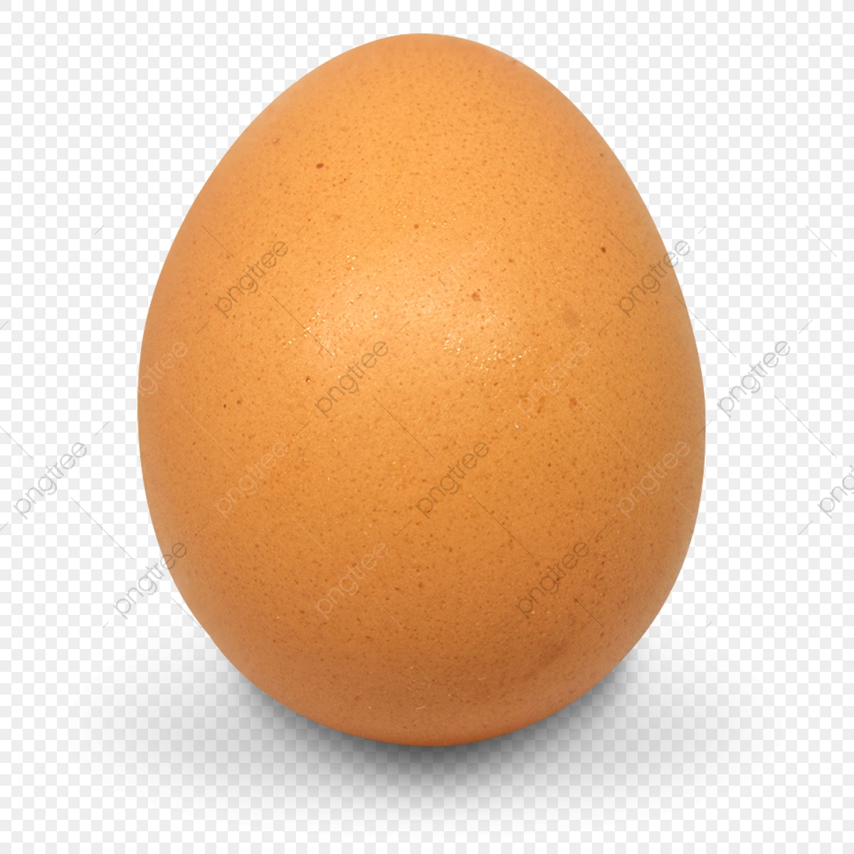 Chicken Egg, Egg Clipart, Png, Chicken PNG and Vector with.
