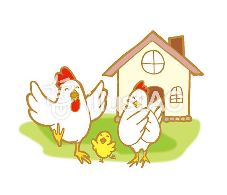 Chicken family 2.