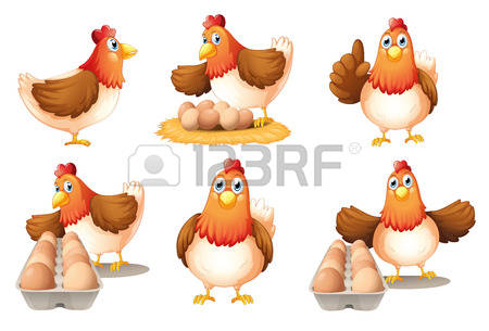 23,647 Chicken Farm Stock Vector Illustration And Royalty Free.