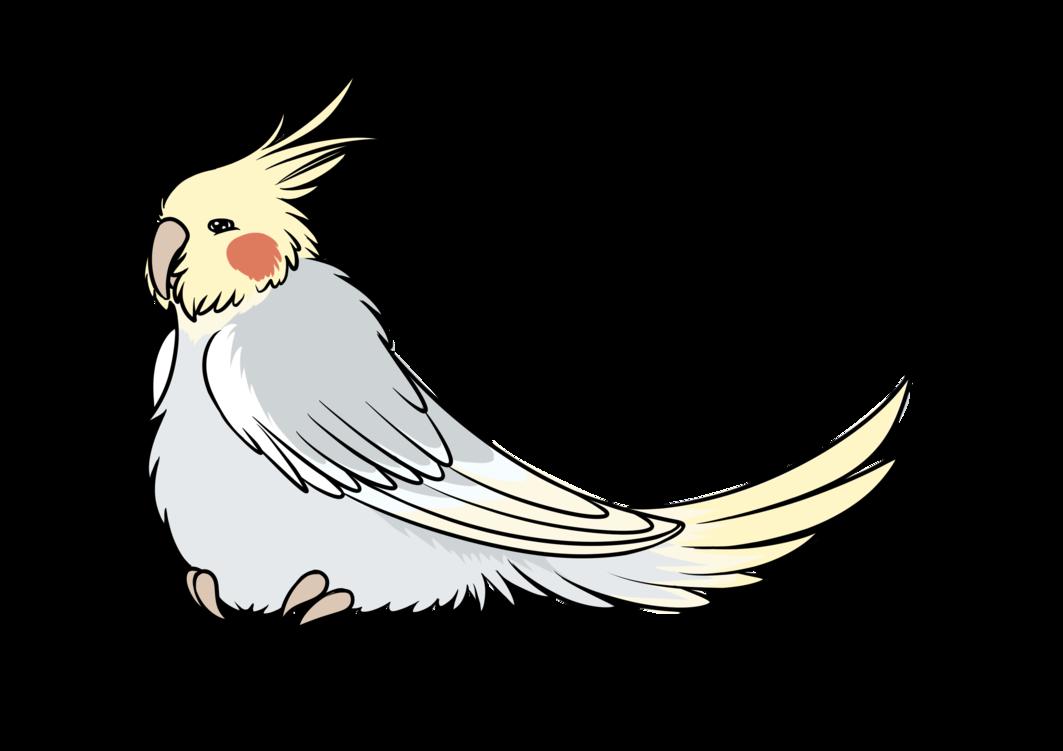 Clip art Cockatiel GIF Bird Chicken.