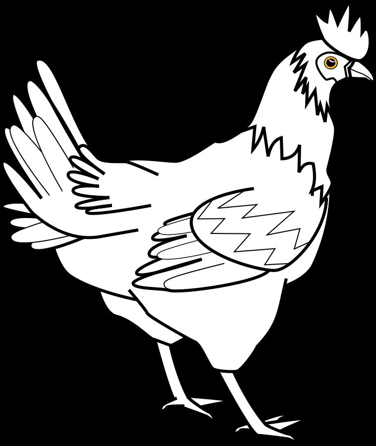 chicken 20clipart 32083 clip art graphic of a white chicken bird.