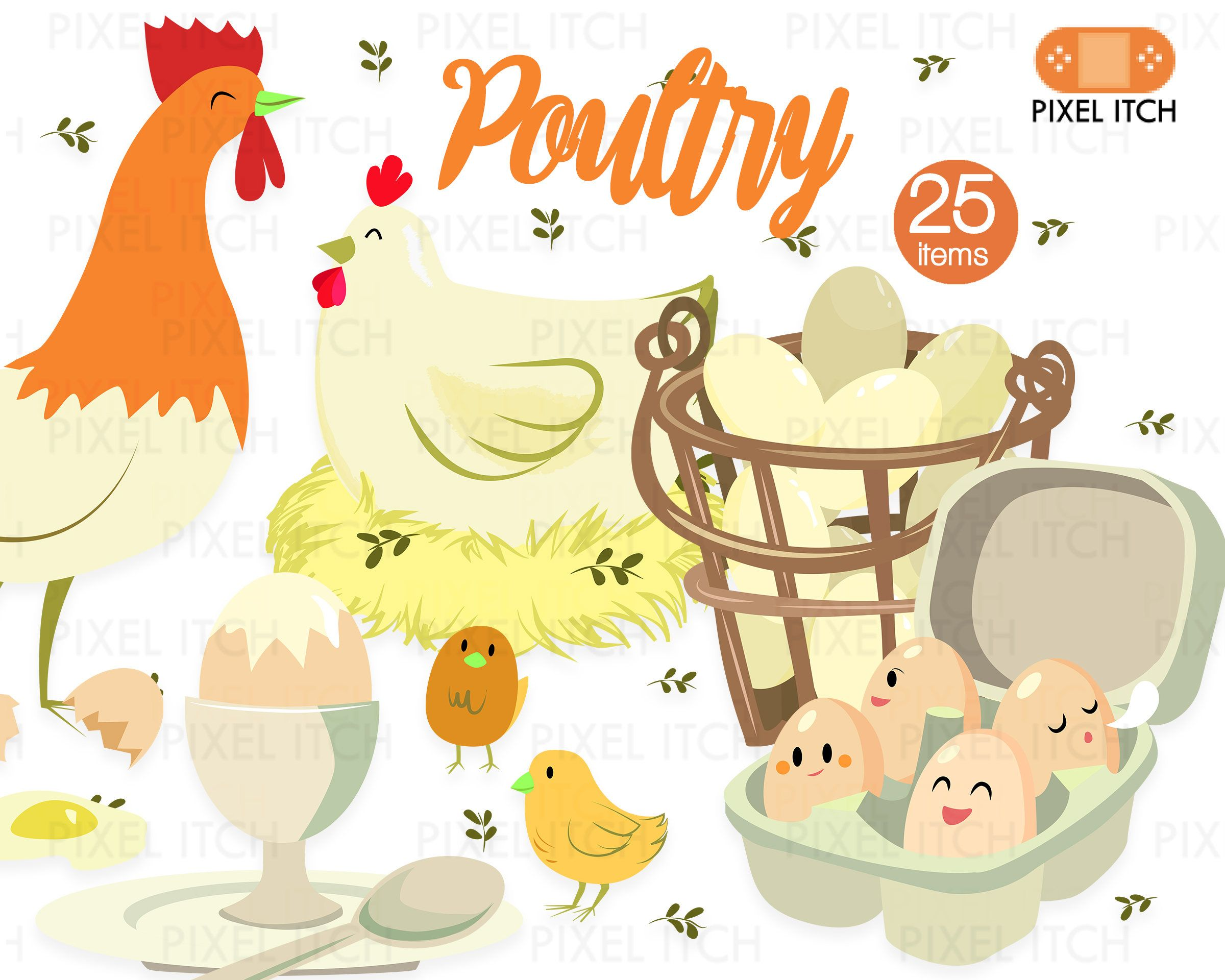 Poultry Illustration.