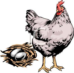 Chicken Egg Clipart.