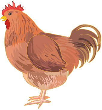 Chicken egg clipart chick clipart brown egg clip art image.