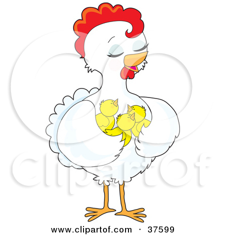 Clipart Illustration of a Pretty White Hen Holding Her Chicks In.