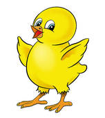 Chicks Clip Art and Stock Illustrations. 9,206 chicks EPS.