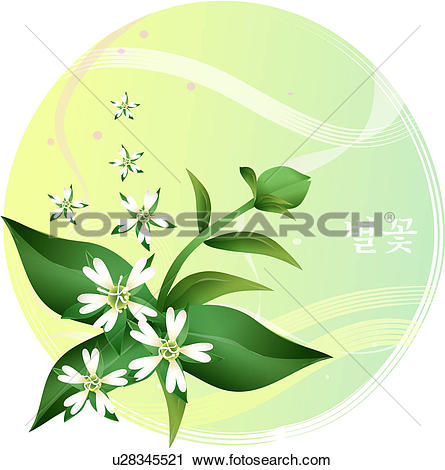 Clipart of flowers, common chickweed, flower, plants, plant.
