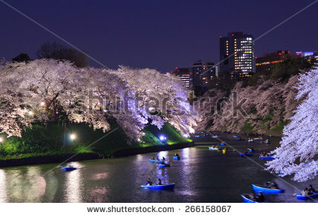 Chidori is the cherry blossoms clipart #18