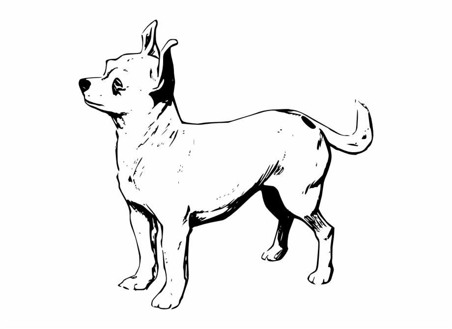 Dog Png Clip Art.