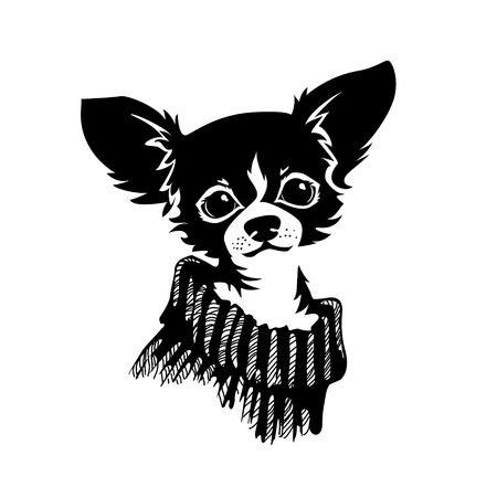 2,791 Chihuahua Cliparts, Stock Vector And Royalty Free Chihuahua.