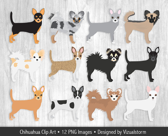 Chihuahua Clipart Hand Drawn Chihuahua Dog by VizualStorm on Etsy.
