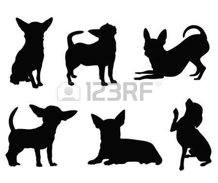 1,690 Chihuahua Cliparts, Stock Vector And Royalty Free Chihuahua.