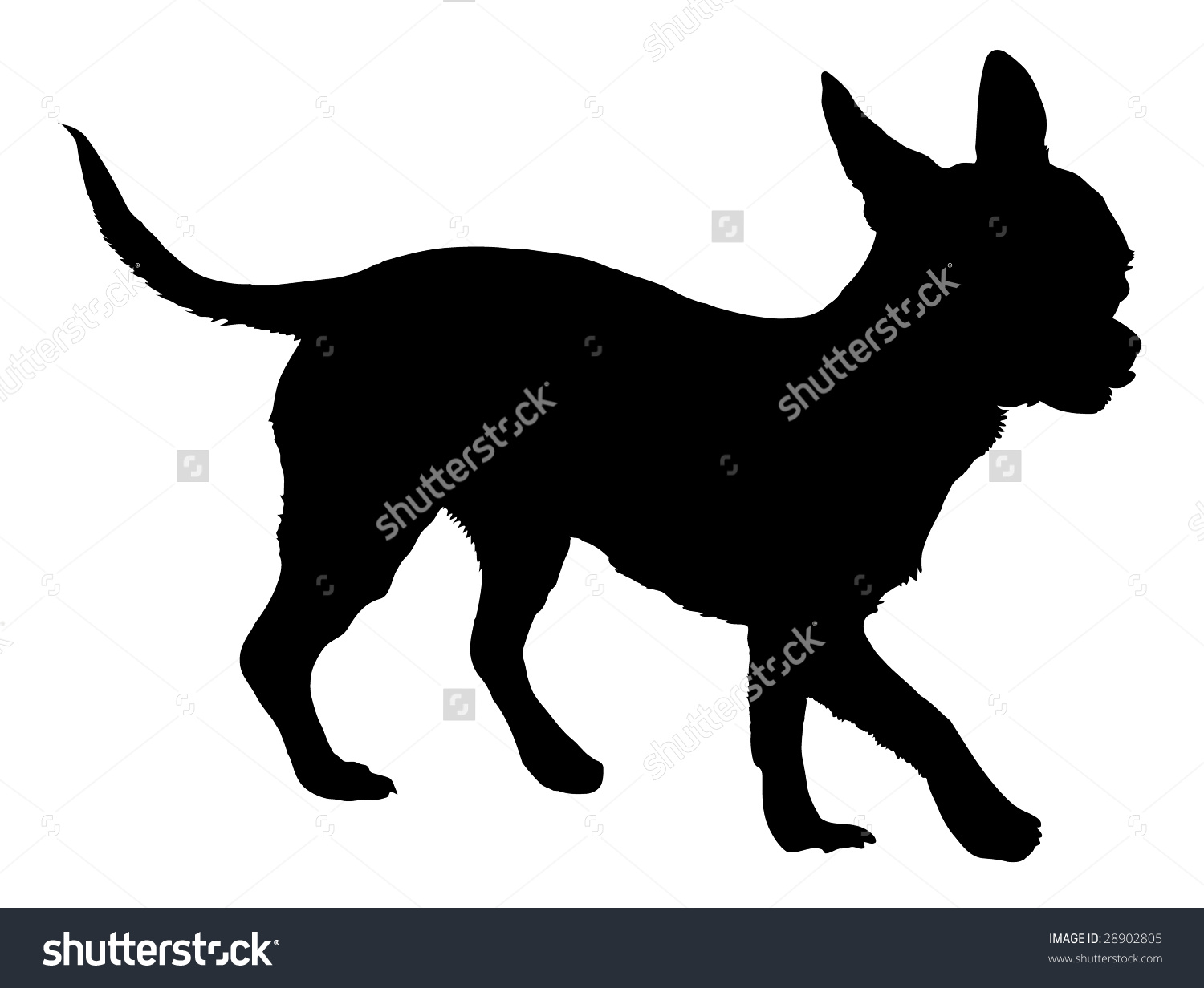 Silhouette Dog Breed Chihuahua Stock Vector 28902805.