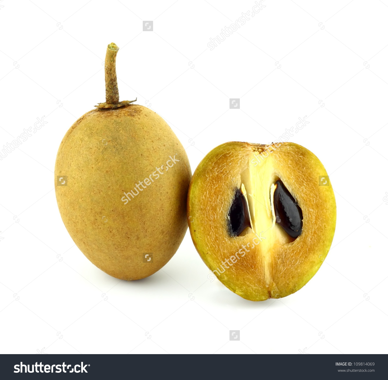 Fresh Sapodilla Fruits On White Background Stock Photo 109814069.