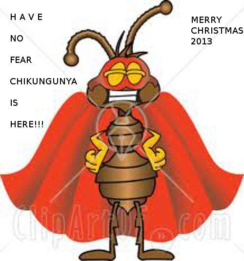 1000+ images about Chikungunya Virus on Pinterest.