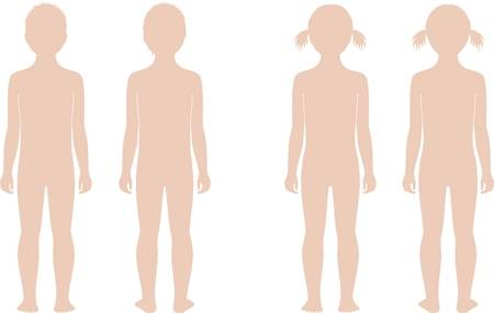 2,488 Body Outline Child Stock Vector Illustration And Royalty Free.