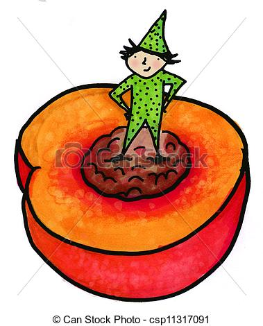 Stock Illustration of Nectarine or Peach.