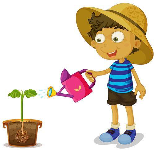 Boy watering plant on white background.