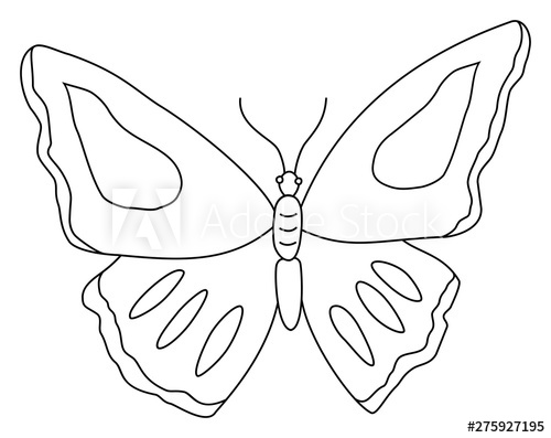 Butterfly clipart. Outline doodle vector illustration.