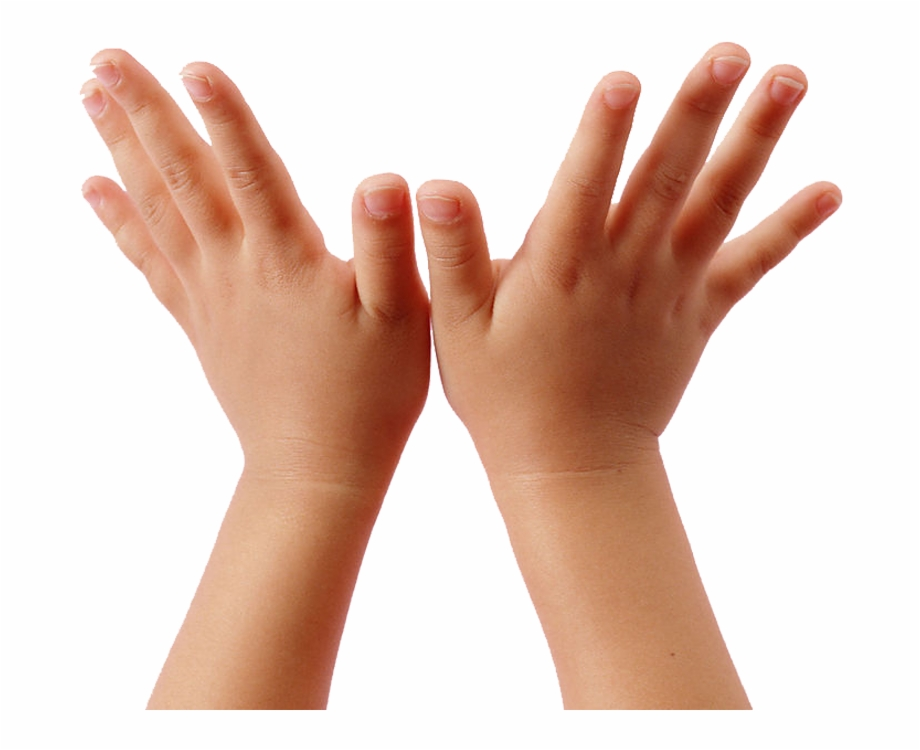 Child Hand Png.