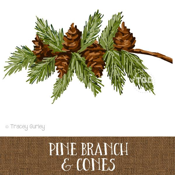 Pine branch clip art.