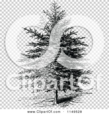 Clipart of a Retro Vintage Black and White Pine Tree.
