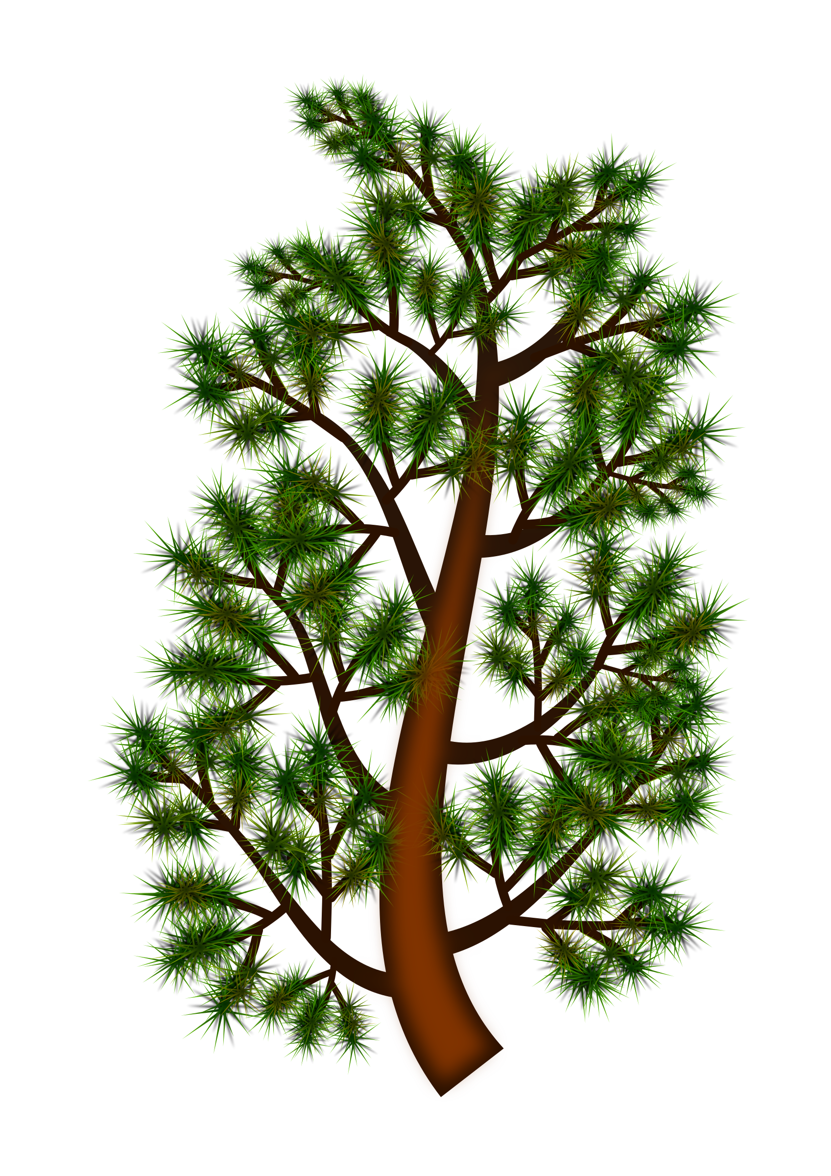 Pine Branch Vector Clipart.