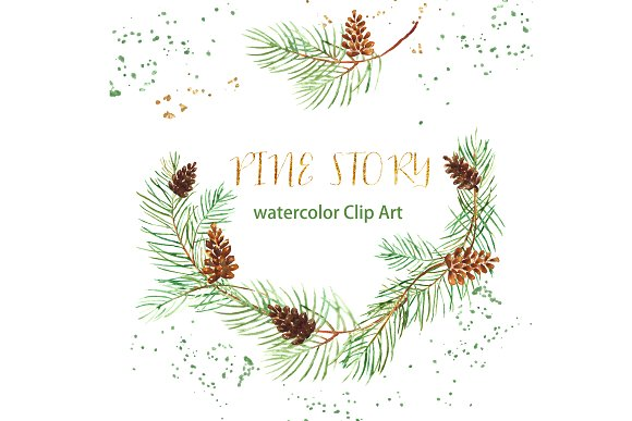 Pine branches. Watercolor Clip Art. ~ Illustrations on Creative Market.