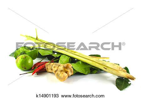 Stock Photo of Lemon grass, kaffir lime leaves, chili, lime.