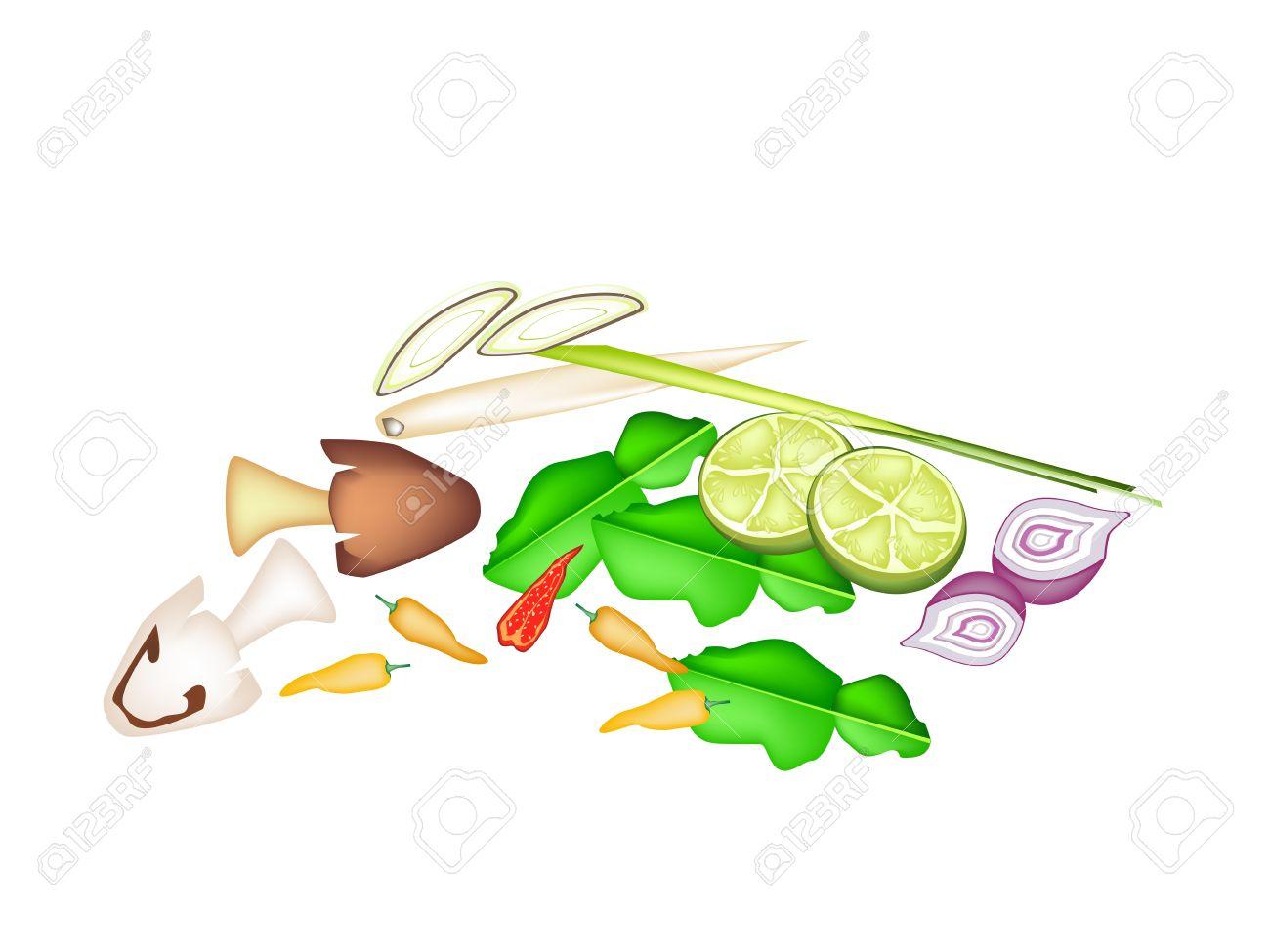 Vegetable And Herb, An Illustration Of Lime, Shallot, Kaffir.