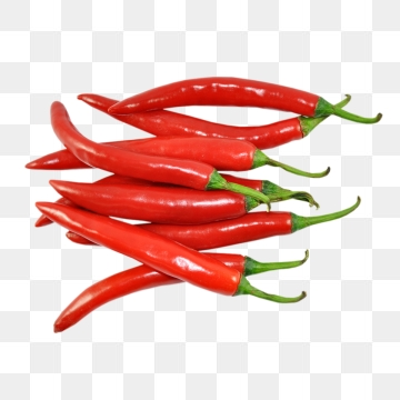 Chilli Png, Vector, PSD, and Clipart With Transparent Background for.