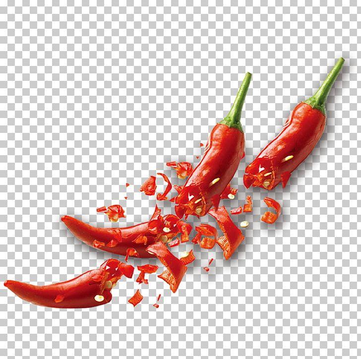 Tabasco Pepper Birds Eye Chili Serrano Pepper Cayenne Pepper Chili.