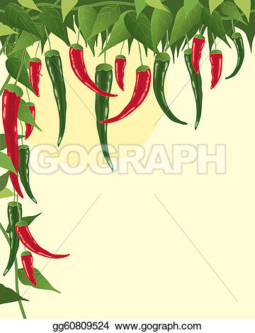 Chillies Clip Art.
