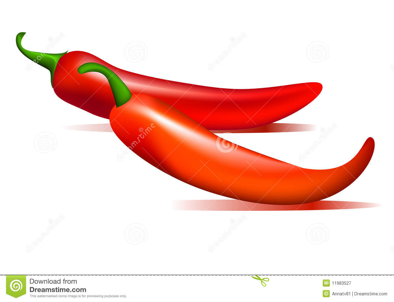 Chillies Stock Illustrations.