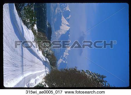 Picture of Snowy Road Chilkat Mountains Juneau Southeast Alaska.