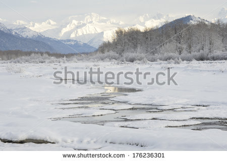 Chilkat River Stock Photos, Royalty.