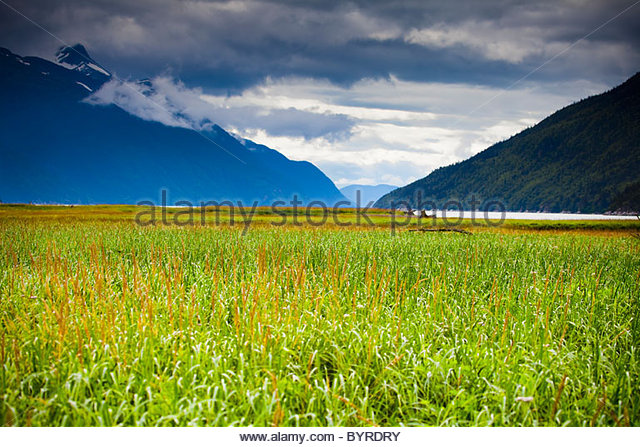 Chilkoot River Stock Photos & Chilkoot River Stock Images.