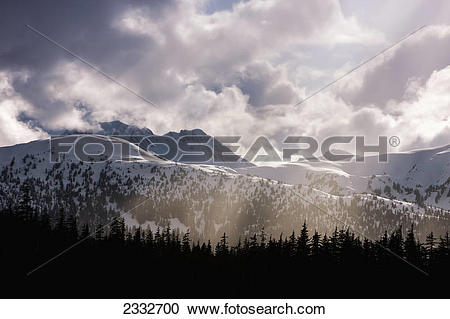 Stock Photography of Tongass national forest and chilkat mountains.