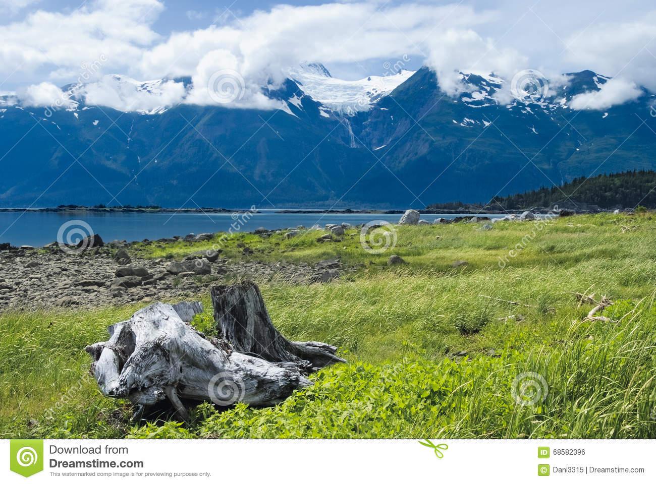 Rainbow Glacier In The Chilkat Range Near Haines, Alaska Stock.