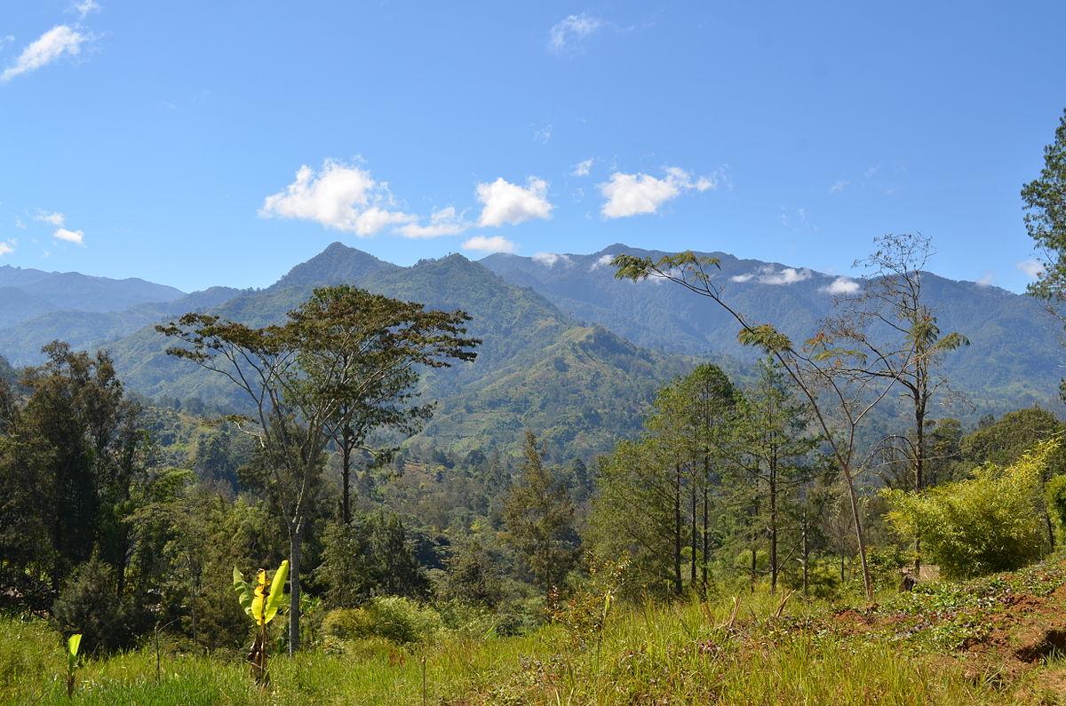PNG Chimbu.