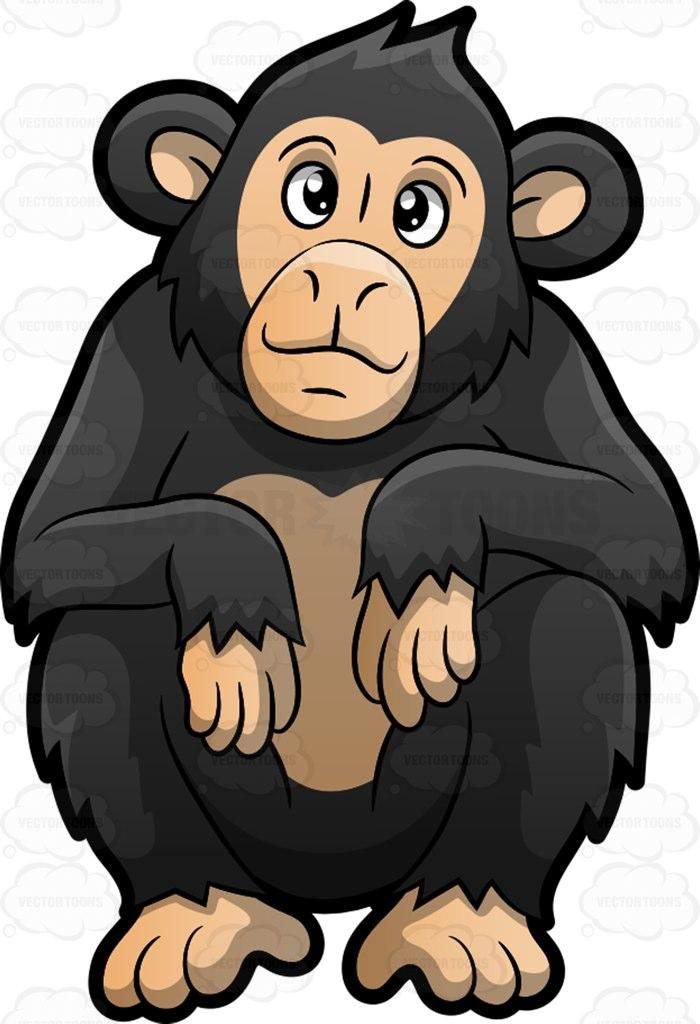 Cute chimpanzee pictures clipart.