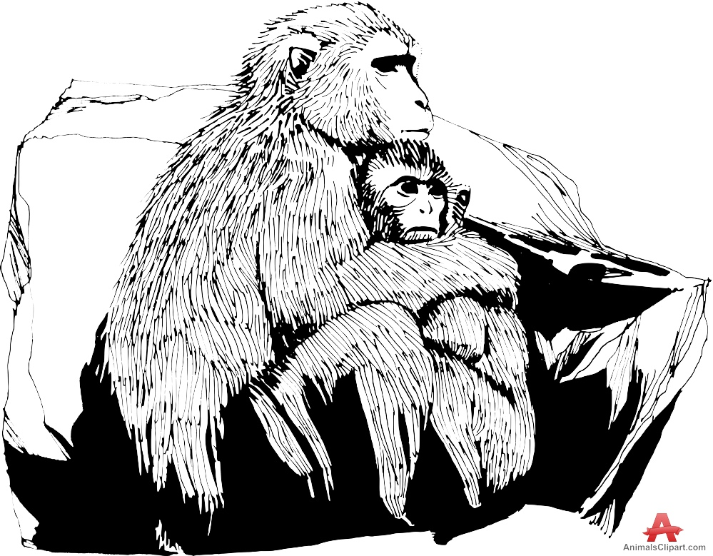 Chimpanzee Mother and Child Drawing Clipart.
