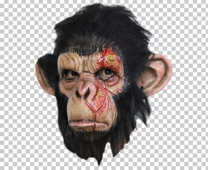 Chimpanzee Ape Latex Mask Halloween Costume PNG, Clipart, Ape, Art.