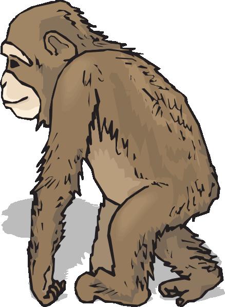 Chimpanzee clip art.