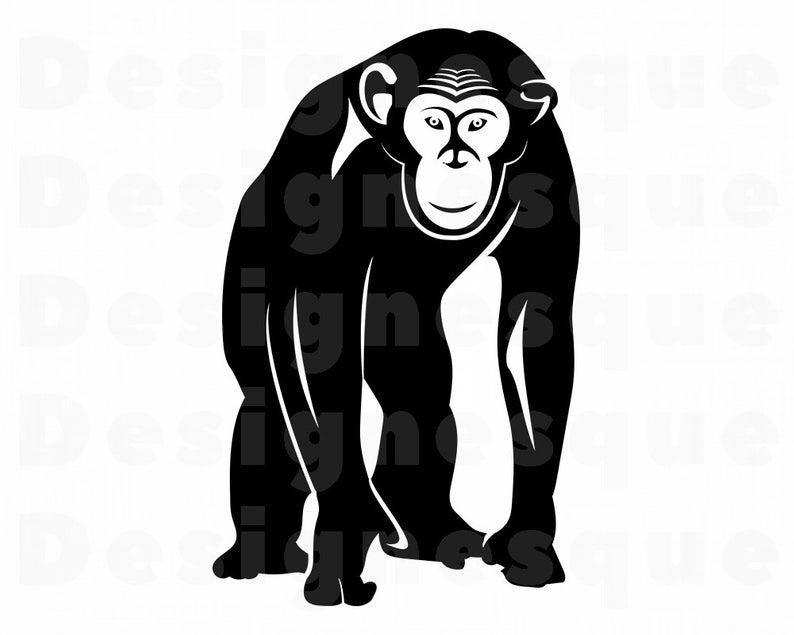 Chimp SVG, Monkey, Chimpanzee SVG, Chimpanzee Clipart, Chimpanzee Files for  Cricut, Chimpanzee Cut Files For Silhouette, Dxf, Png, Vector.
