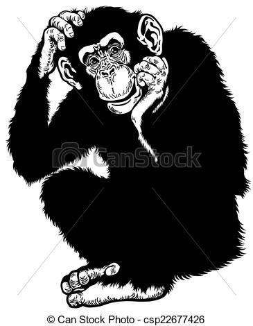Chimpanzee Illustrations and Clipart. 5,673 Chimpanzee royalty.