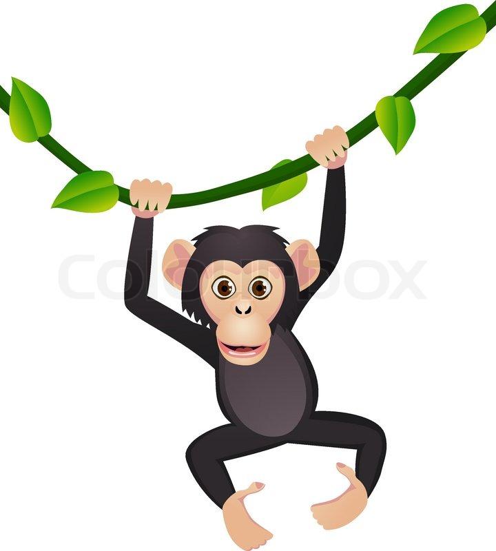 Cute chimpanzee.