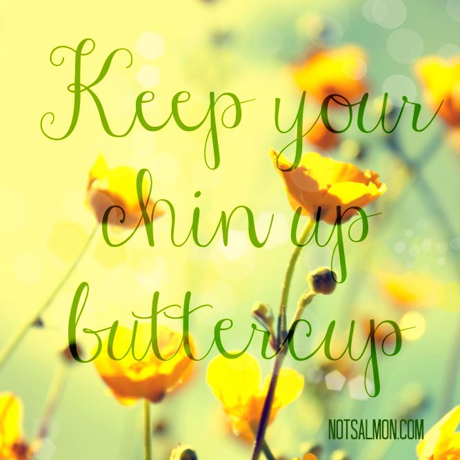 Chin Up Board Clipart Clipground