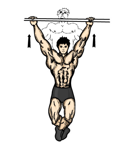 Pullup Clipart.