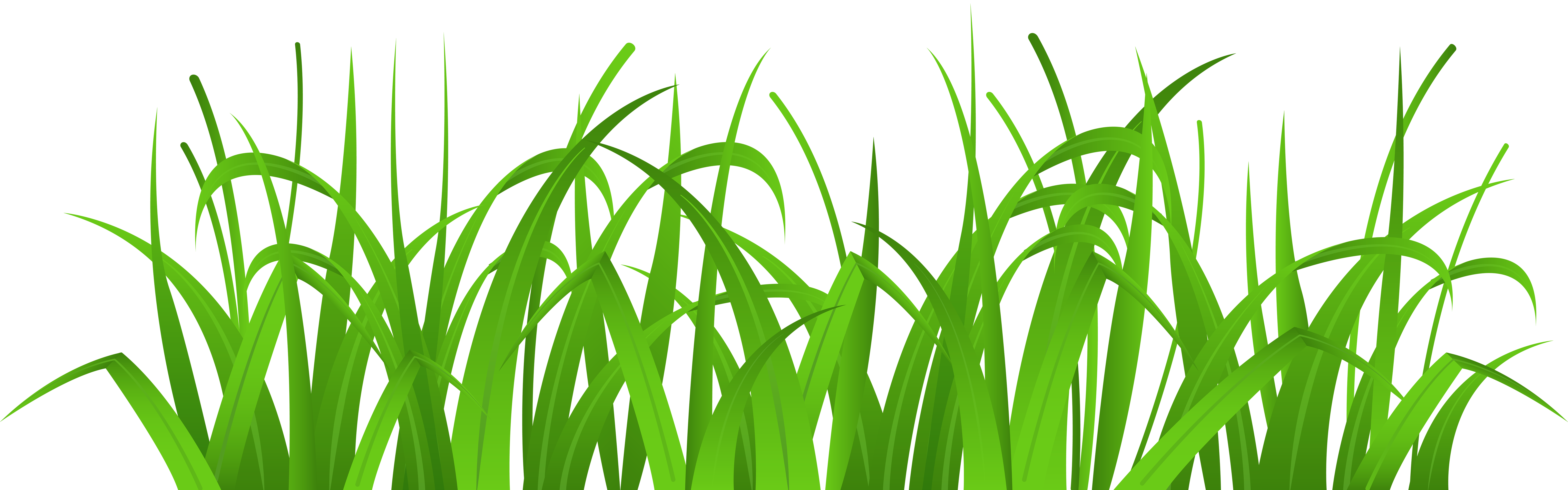 Grass Cover PNG Clip Art.